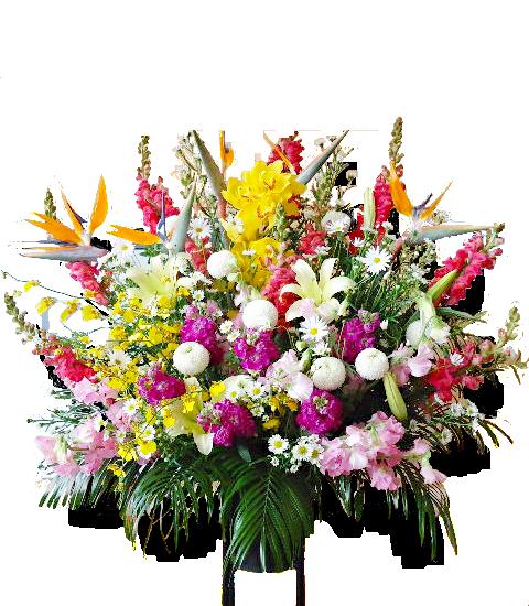 スタンド花(開店祝い、開業祝い、移転祝い)